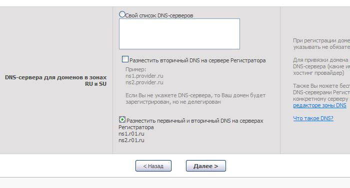 Подключение домена к вашему li.ru блогу в картинках 1